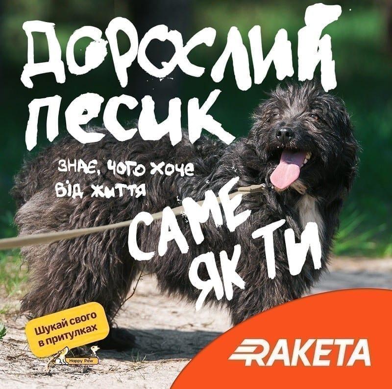 Raketa заохочує «Шукати свого в притулках»